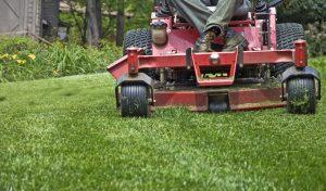 estate-management-mowing